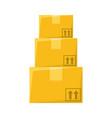 delivery box cardboard vector image