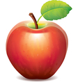 one red apple vector image