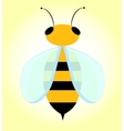 Bee with transparent wings vector image
