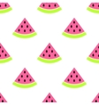 Watermelon slices seamless pink pattern on white vector image
