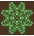 Circular pattern of palm leaves on a brown vector image
