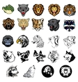 set of wild animals and dogs vector image