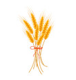 wheat icon flat style isolated on white vector image