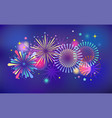 winner victory fireworks and celebration vector image