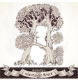 Fable forest hand drawn by a vintage font - A vector image
