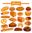 set of yummy assorted bread and bakery food item vector image