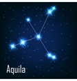 The constellation Aquila star in the night sky vector image