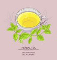 cup or peppermint tea vector image