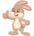 Cartoon rabbit giving thumb up vector image