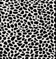 skin of leopard vector image