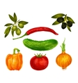 Vegetables isolated set vector image