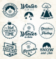 Winter and Badges Set vector image