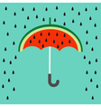 Big watermelon slice cut with seed Umbrella and vector image