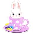 Cup Bunny vector image