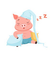 cute pig in hat sleeping funny cartoon animal vector image