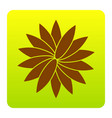 flower sign brown icon at green-yellow vector image