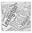 lexington sc chiropractors Word Cloud Concept vector image
