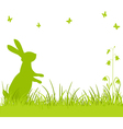 Easter bunny in the meadow vector image