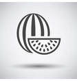 Watermelon icon on gray background vector image