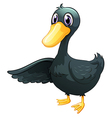 A young gray duck vector image vector image