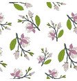 hand drawm magnolia seamless pattern vector image