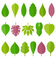 leaves icon set 1 vector image