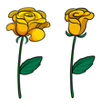 Two lovely flowers vector image