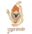 Funny Indian Yogi Man vector image