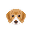 beagle puppy head in pixel art style dog vector image