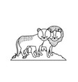 line cute lion animal couple together vector image