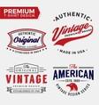 Set Of Premium Apparel T-Shirt Design vector image