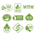 labels or eco logo set with plants and green leafs vector image