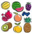 set of fruits melon watermelon blackberry peach vector image
