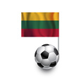 Soccer Balls or Footballs with flag of Lithuania vector image
