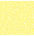 Lemon fruit abstract background vector image