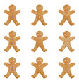 gingerbread man holiday cookie set christmas vector image