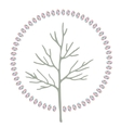 Abstract stylized round art tree vector image vector image