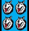 Husky dog portrait looking around vector image