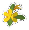 cartoon plumeria flower decoration icon vector image