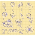 Set of sketches of flowers vector image vector image