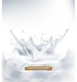 Dairy splash on a grey background vector image
