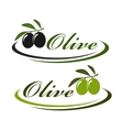 sign with olives vector image vector image