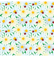 Seamless pattern with chamomile flowers and ladybi vector image vector image