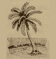 with palm on a sea shore vector image