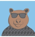 bear with glasses vector image