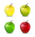 a set of apples vector image