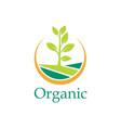plant bio organic farm logo vector image