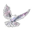 Colored hand drawing dove vector image