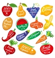 Fruit and vegetables color silhouettes logo for vector image