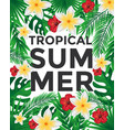 tropical poster vector image vector image